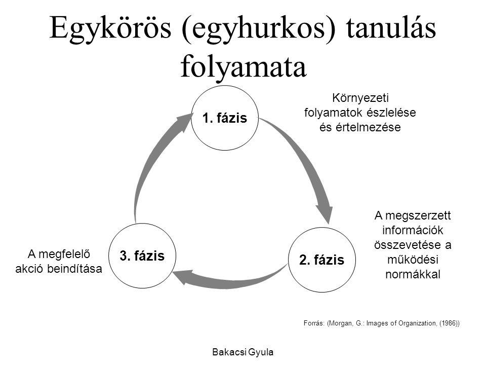 Egykörös (egyhurkos) tanulás folyamata