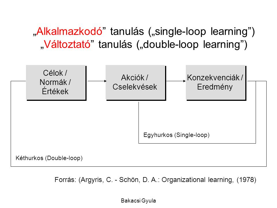 """Alkalmazkodó tanulás (""single-loop learning ) ""Változtató tanulás (""double-loop learning )"