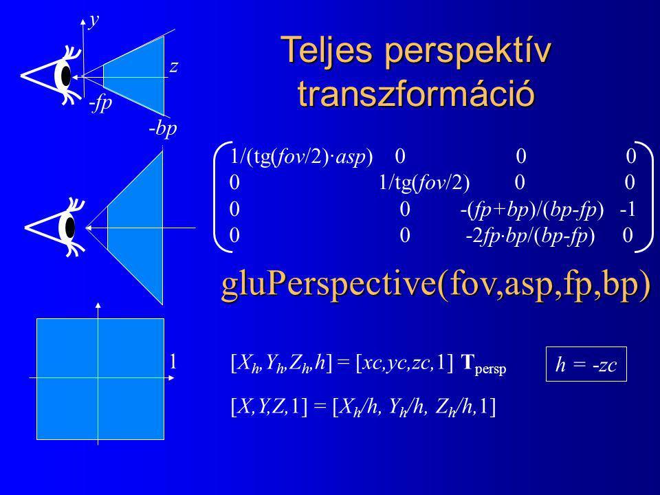 Teljes perspektív transzformáció