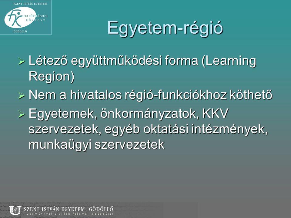 Egyetem-régió Létező együttműködési forma (Learning Region)