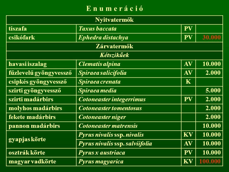 E n u m e r á c i ó Nyitvatermők tiszafa Taxus baccata PV csikófark