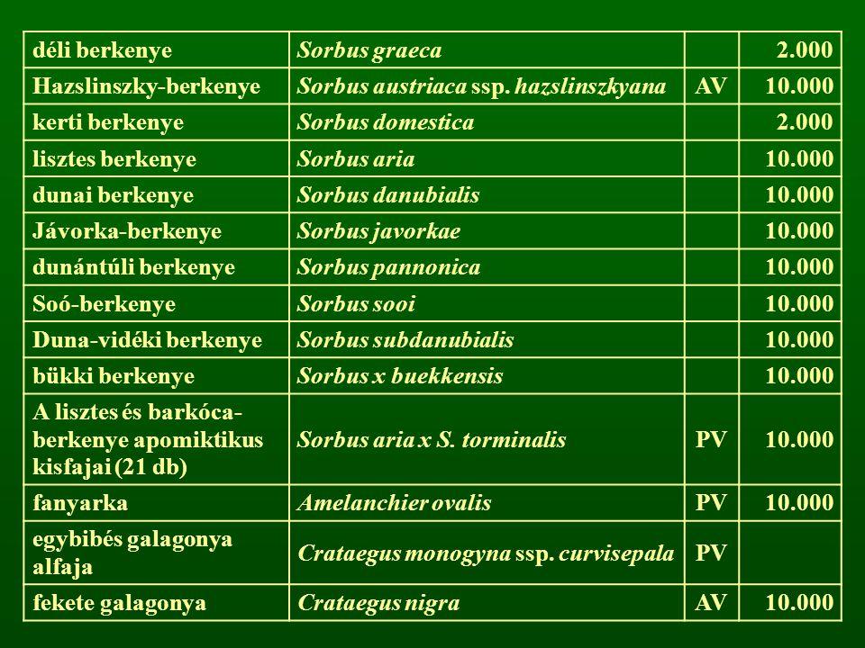 déli berkenye Sorbus graeca. 2.000. Hazslinszky-berkenye. Sorbus austriaca ssp. hazslinszkyana. AV.