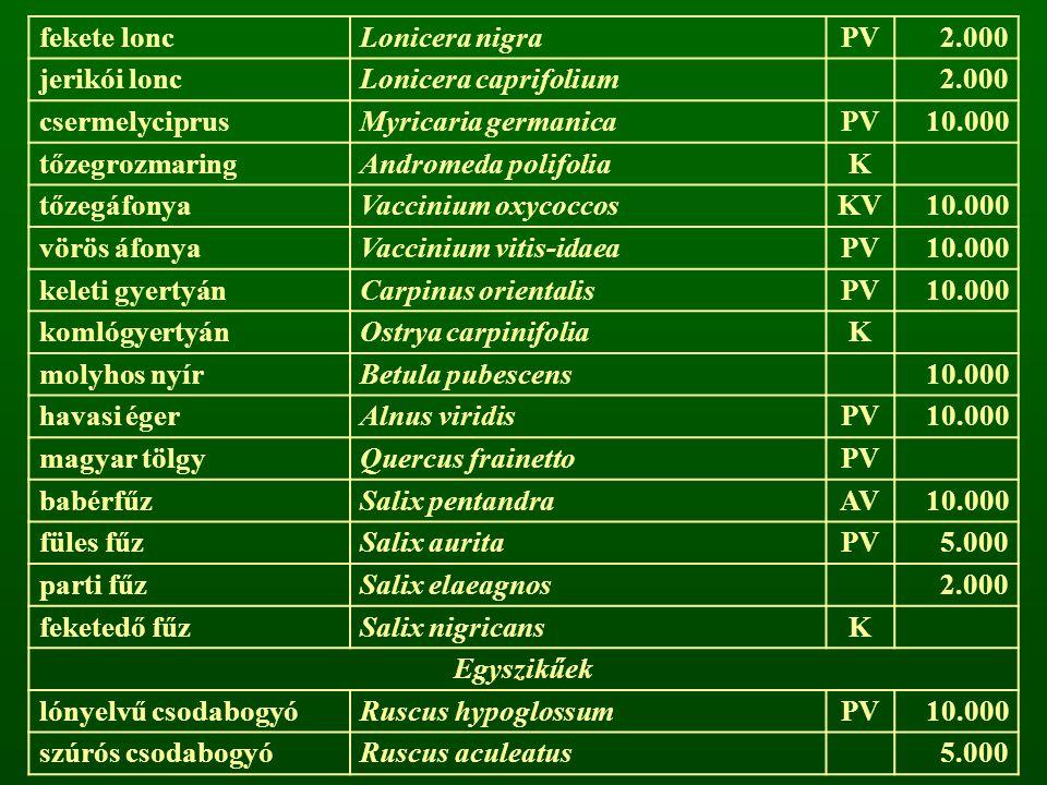 fekete lonc Lonicera nigra. PV. 2.000. jerikói lonc. Lonicera caprifolium. csermelyciprus. Myricaria germanica.