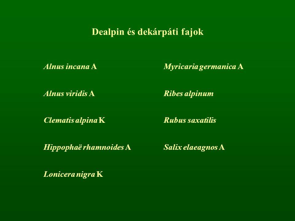 Dealpin és dekárpáti fajok