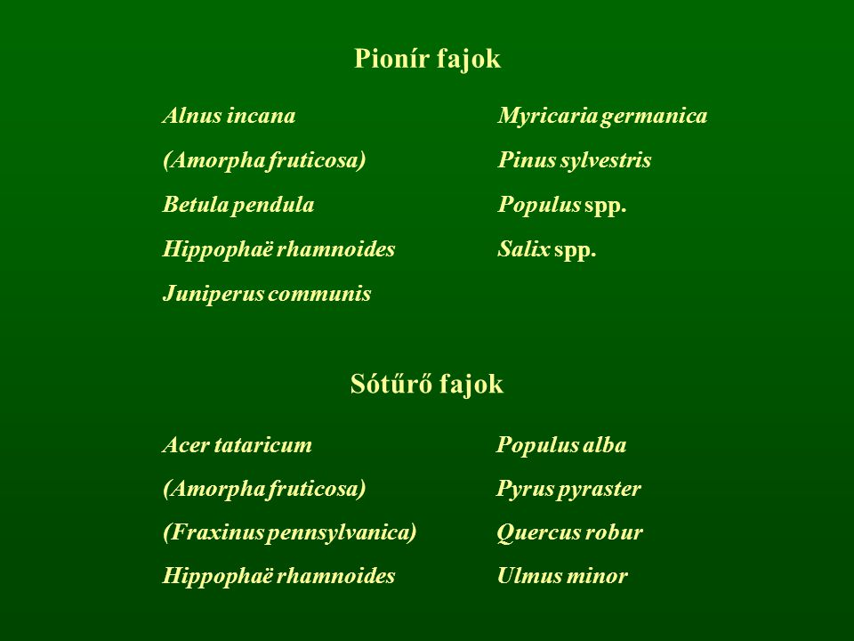 Pionír fajok Sótűrő fajok