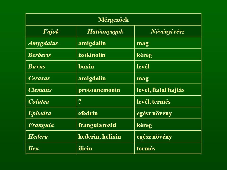 Mérgezőek Fajok. Hatóanyagok. Növényi rész. Amygdalus. amigdalin. mag. Berberis. izokinolin.