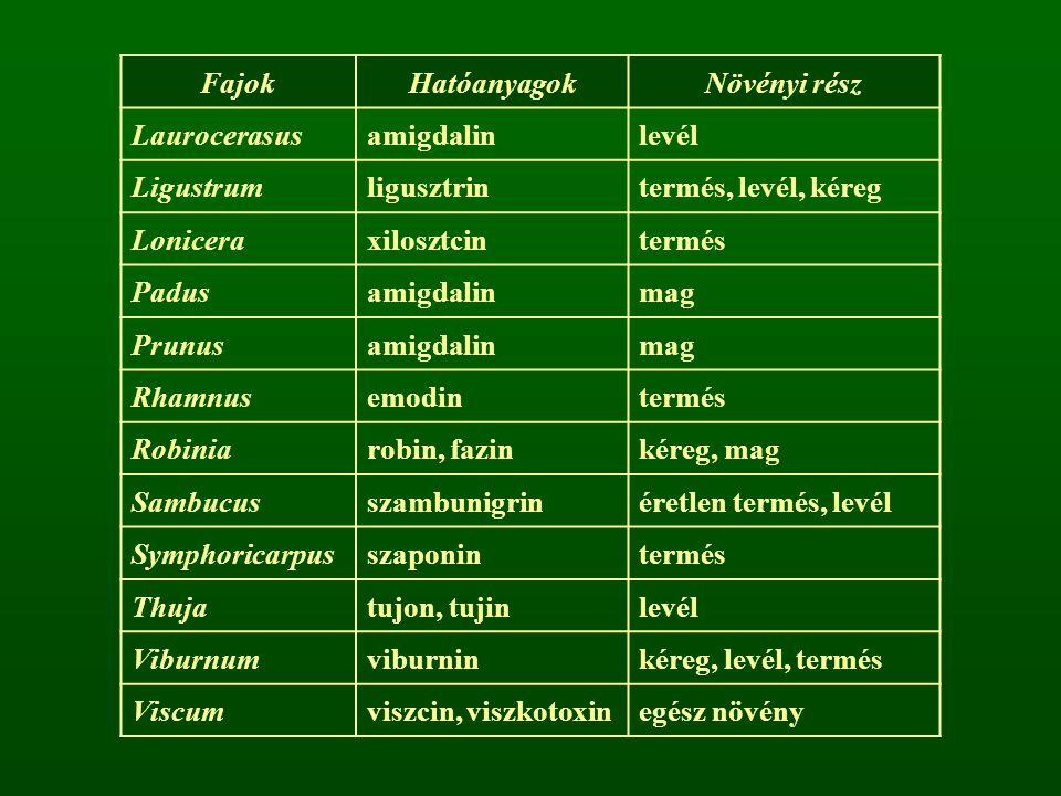 Fajok Hatóanyagok. Növényi rész. Laurocerasus. amigdalin. levél. Ligustrum. ligusztrin. termés, levél, kéreg.