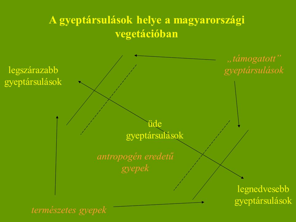 A gyeptársulások helye a magyarországi vegetációban