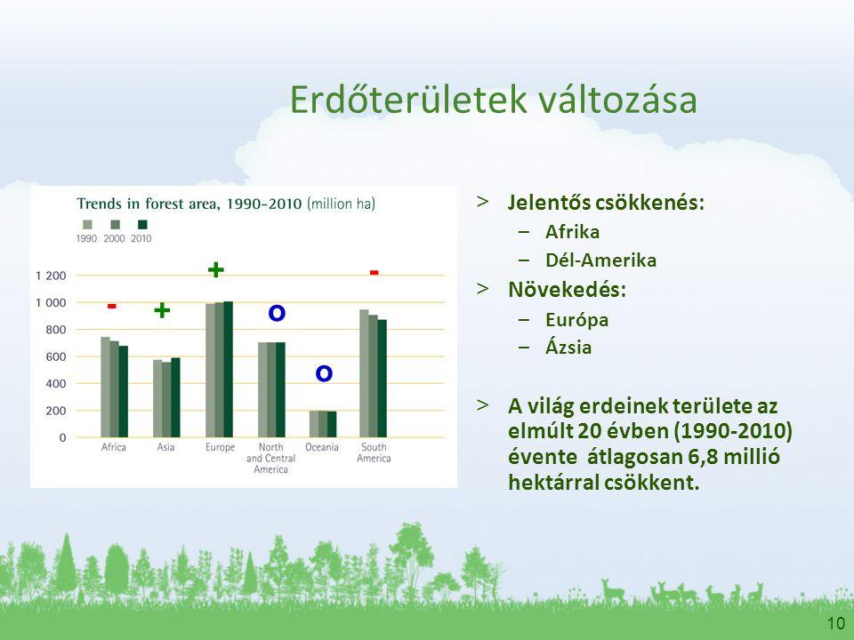 Erdőterületek változása