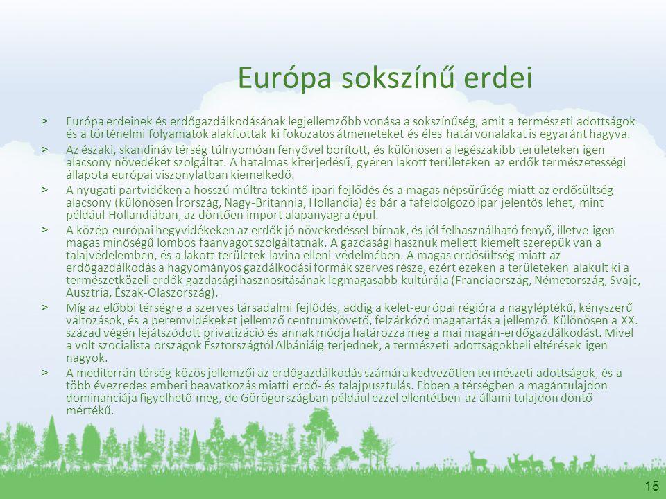 Európa sokszínű erdei