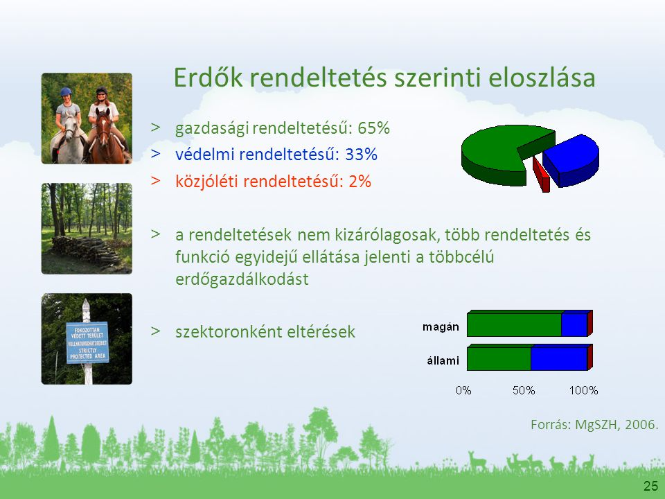 Erdők rendeltetés szerinti eloszlása