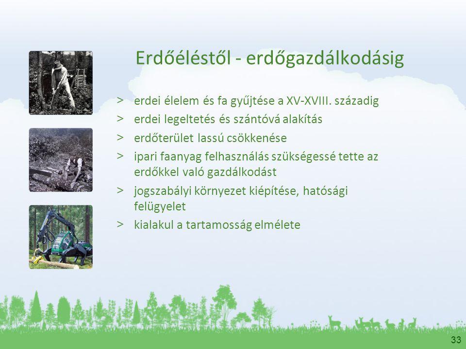 Erdőéléstől - erdőgazdálkodásig