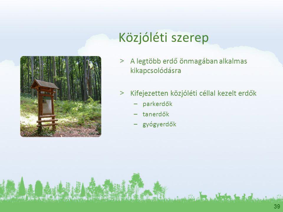 Közjóléti szerep A legtöbb erdő önmagában alkalmas kikapcsolódásra