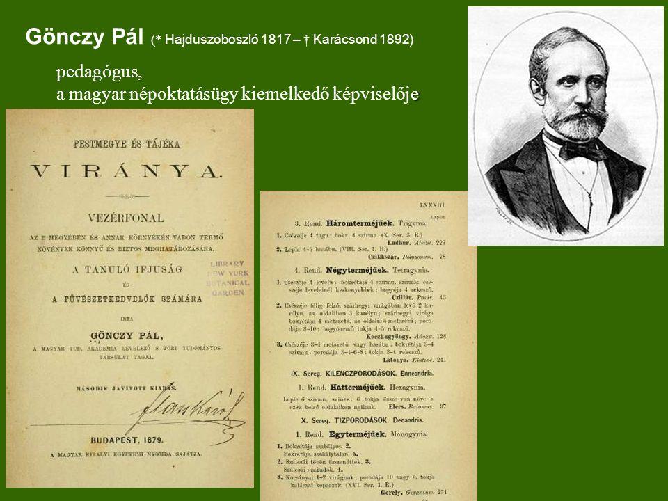 Gönczy Pál (* Hajduszoboszló 1817 – † Karácsond 1892)