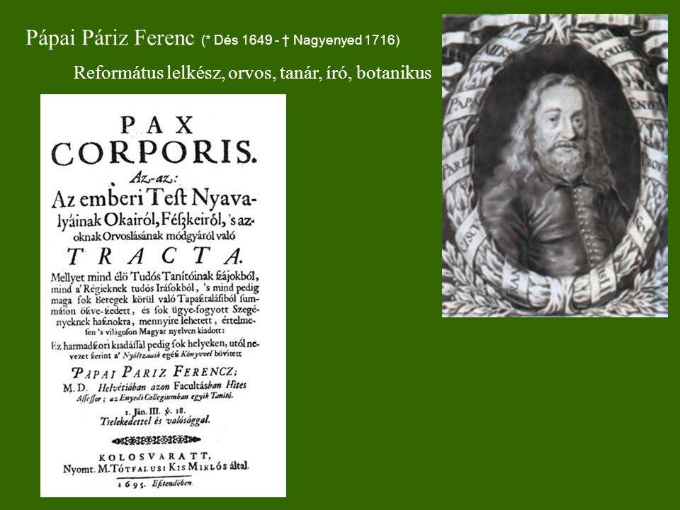 Pápai Páriz Ferenc (* Dés 1649 - † Nagyenyed 1716)