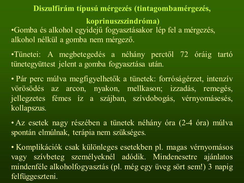 Diszulfirám típusú mérgezés (tintagombamérgezés,