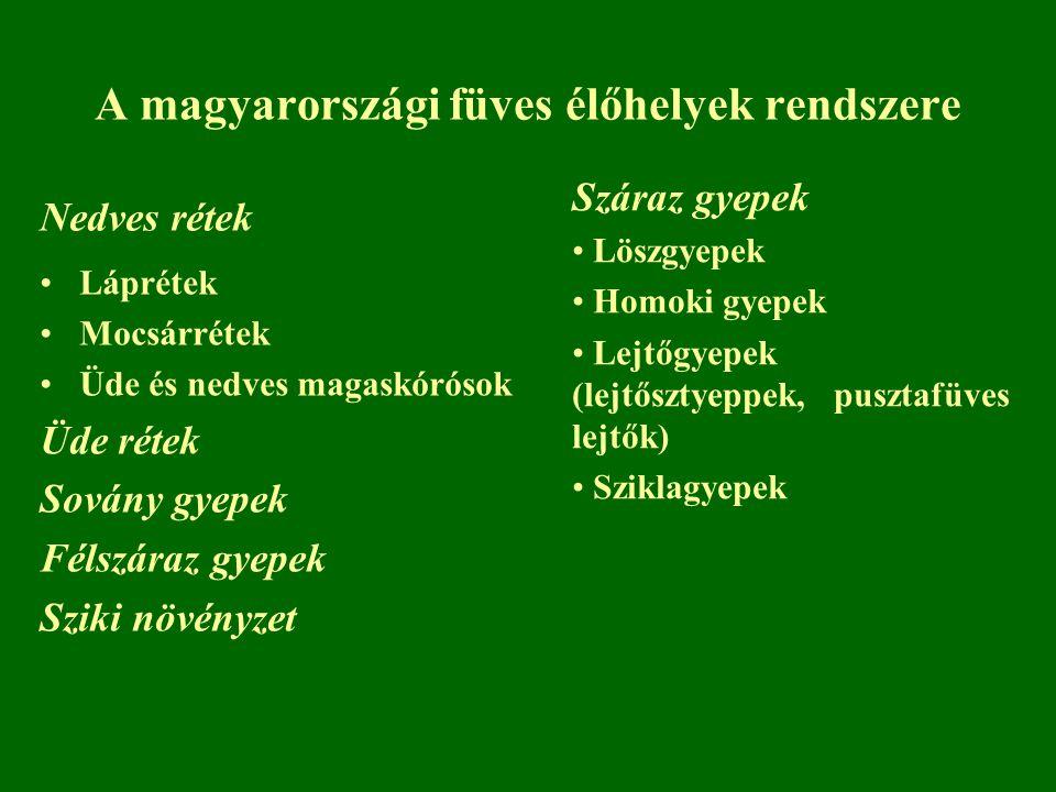 A magyarországi füves élőhelyek rendszere