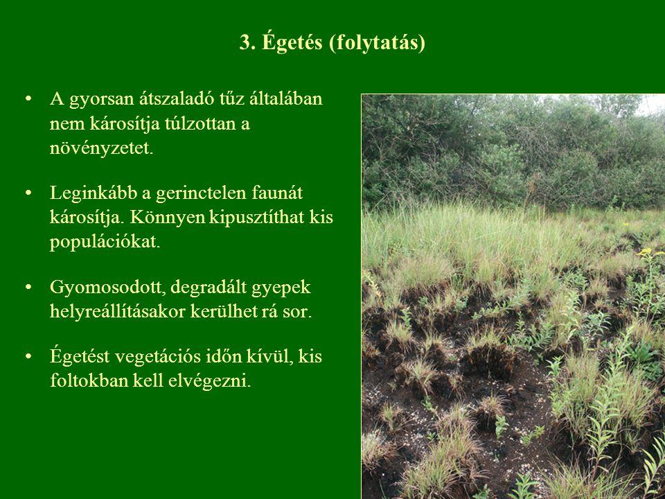 3. Égetés (folytatás) A gyorsan átszaladó tűz általában nem károsítja túlzottan a növényzetet.