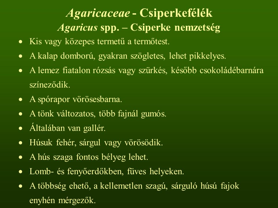 Agaricaceae - Csiperkefélék Agaricus spp. – Csiperke nemzetség