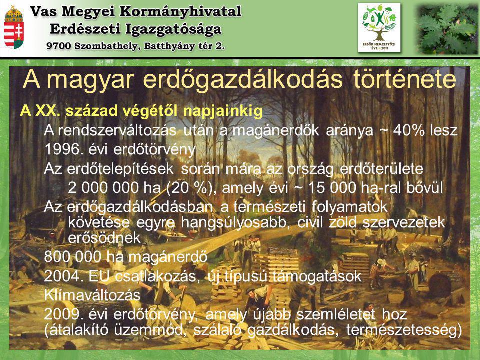 A magyar erdőgazdálkodás története