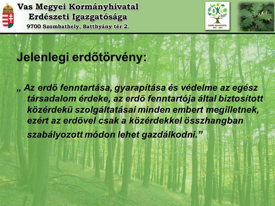 Jelenlegi erdőtörvény:
