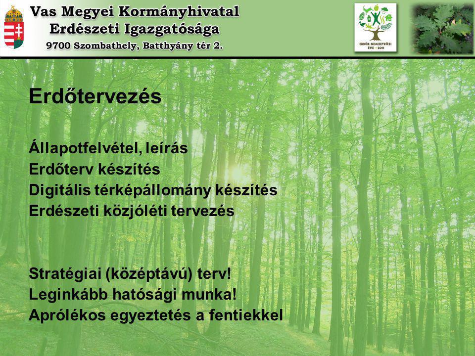 Erdőtervezés Állapotfelvétel, leírás Erdőterv készítés