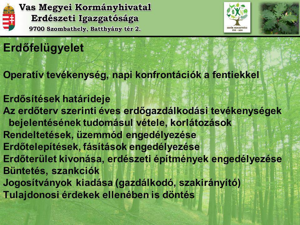 Erdőfelügyelet Operatív tevékenység, napi konfrontációk a fentiekkel