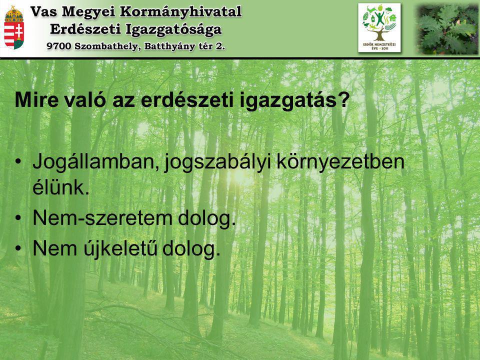 Mire való az erdészeti igazgatás
