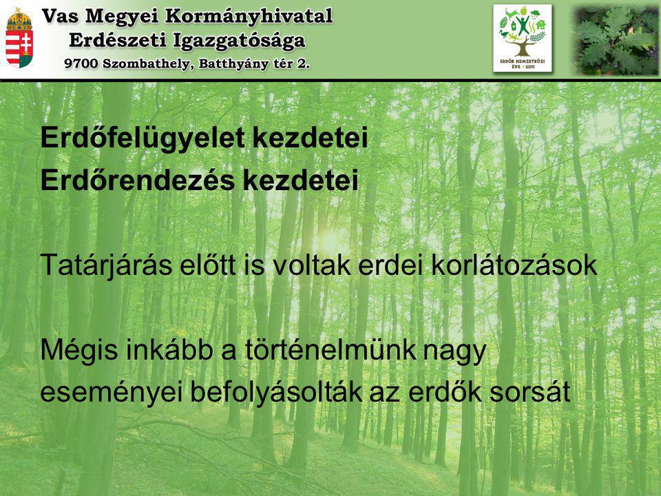 Erdőfelügyelet kezdetei