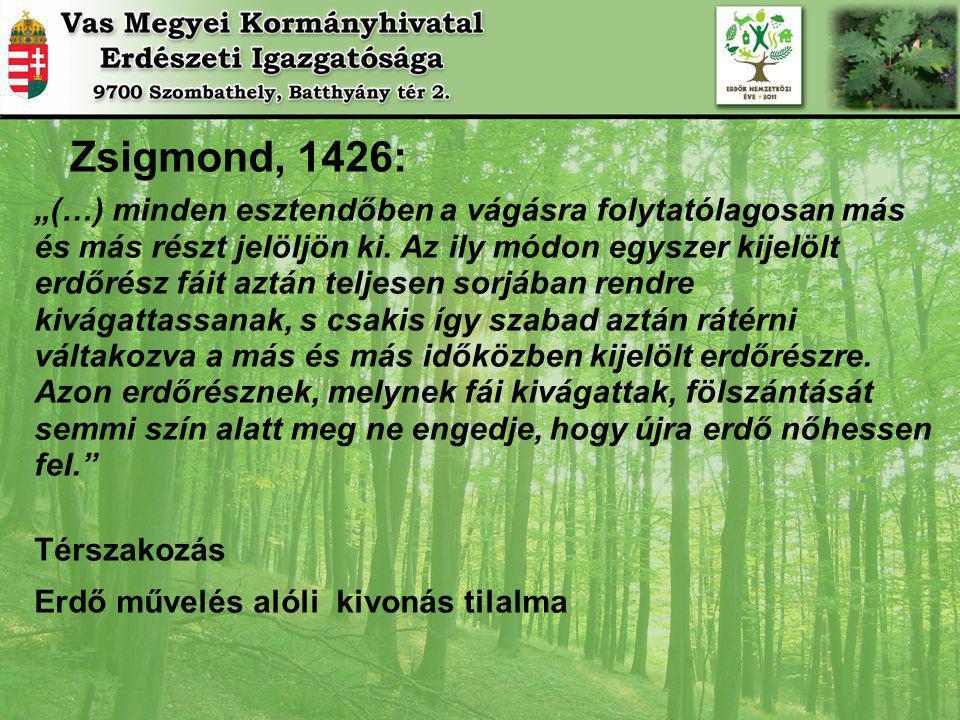 """Zsigmond, 1426: """"(…) minden esztendőben a vágásra folytatólagosan más. és más részt jelöljön ki. Az ily módon egyszer kijelölt."""