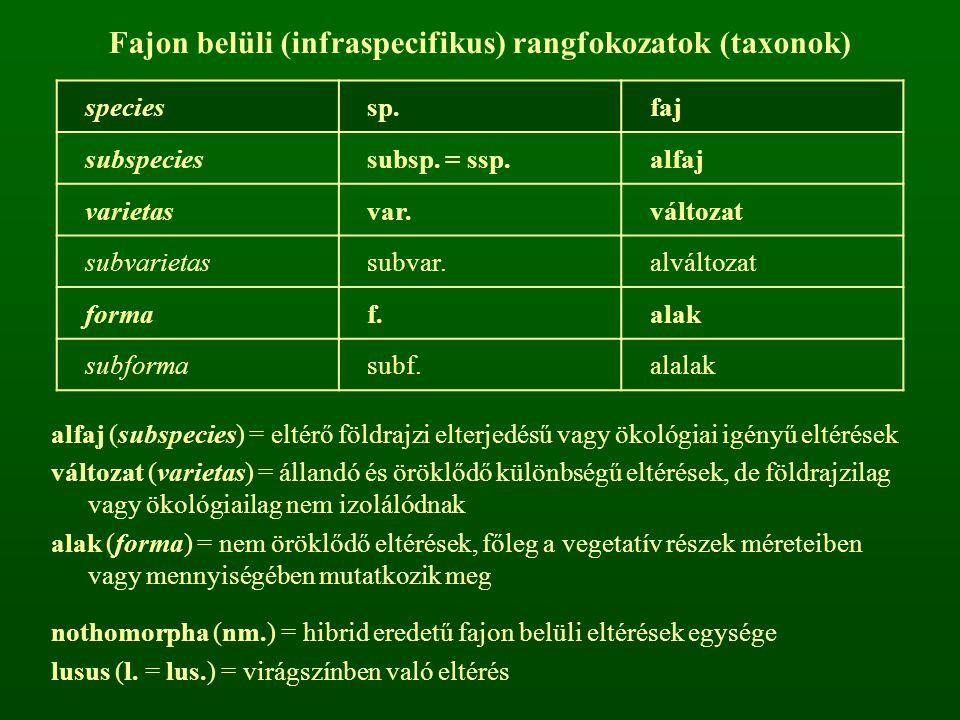 Fajon belüli (infraspecifikus) rangfokozatok (taxonok)