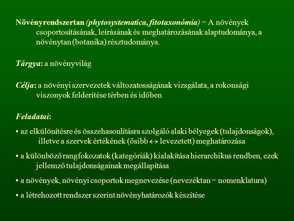 Növényrendszertan (phytosystematica, fitotaxonómia) = A növények csoportosításának, leírásának és meghatározásának alaptudománya, a növénytan (botanika) résztudománya.