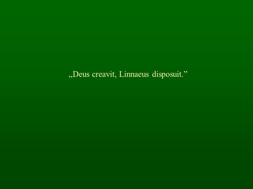 """""""Deus creavit, Linnaeus disposuit."""