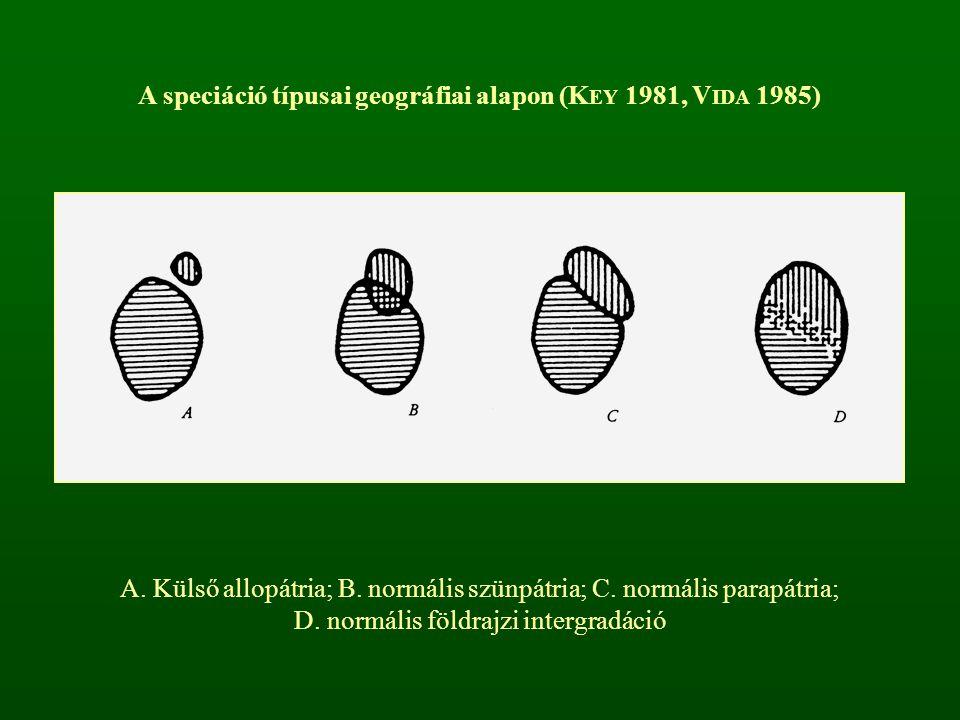 A speciáció típusai geográfiai alapon (KEY 1981, VIDA 1985)