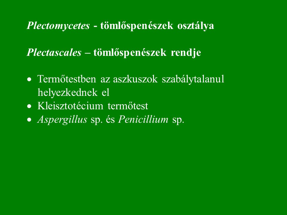 Plectomycetes - tömlőspenészek osztálya