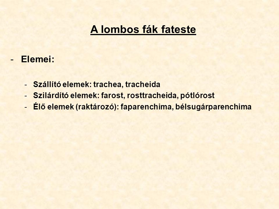 A lombos fák fateste Elemei: Szállító elemek: trachea, tracheida