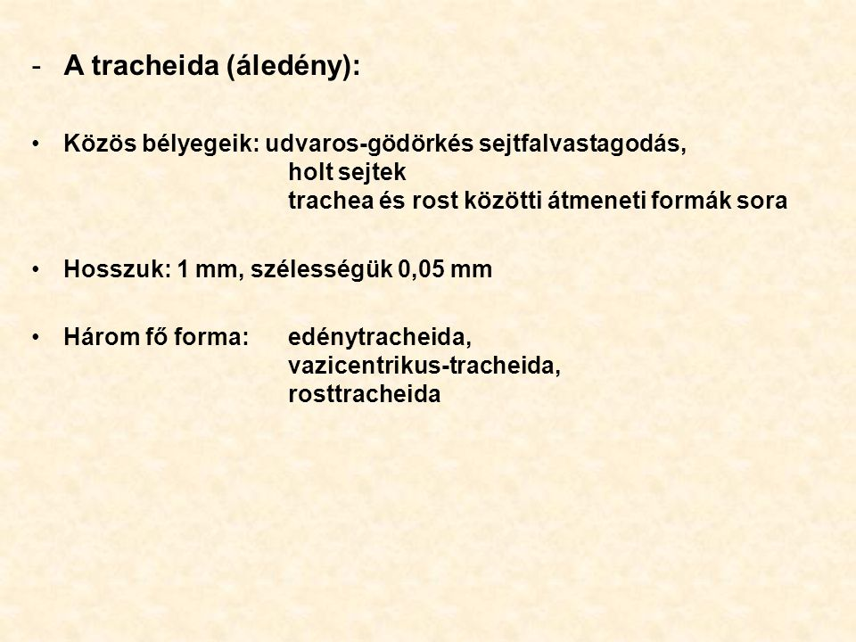 A tracheida (áledény):