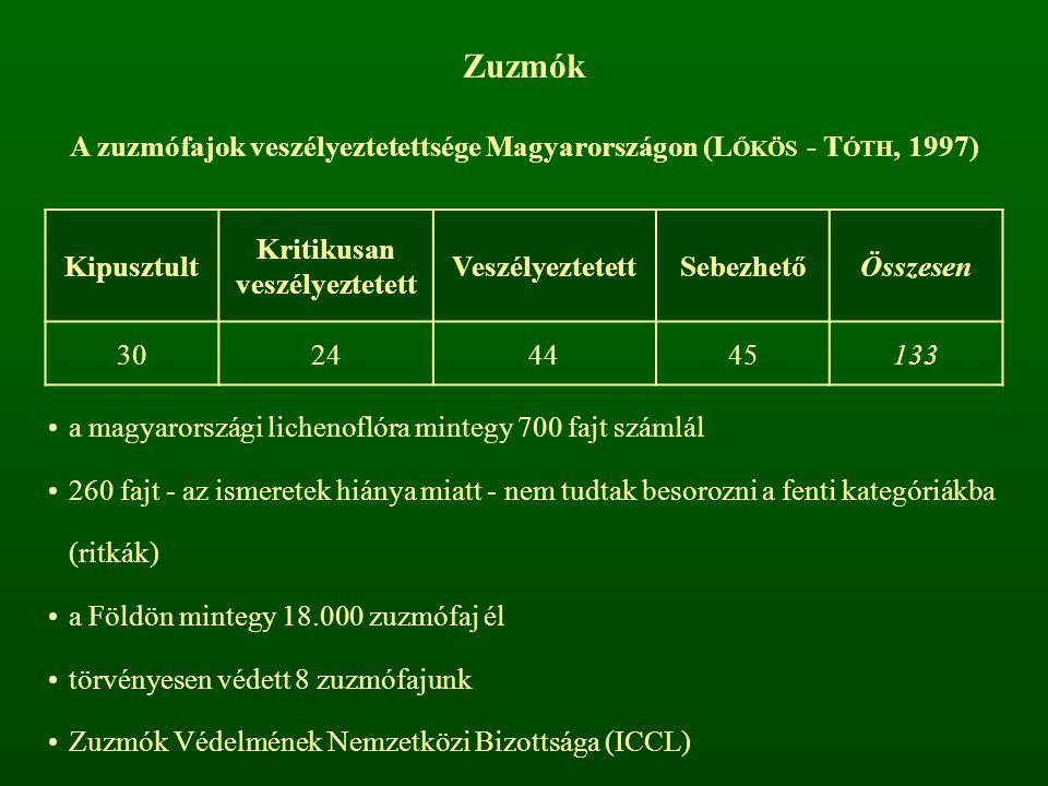 Zuzmók A zuzmófajok veszélyeztetettsége Magyarországon (LŐKÖS - TÓTH, 1997) Kipusztult. Kritikusan veszélyeztetett.