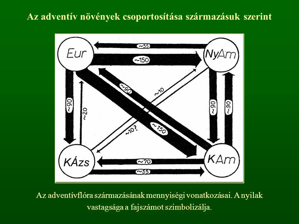 Az adventív növények csoportosítása származásuk szerint