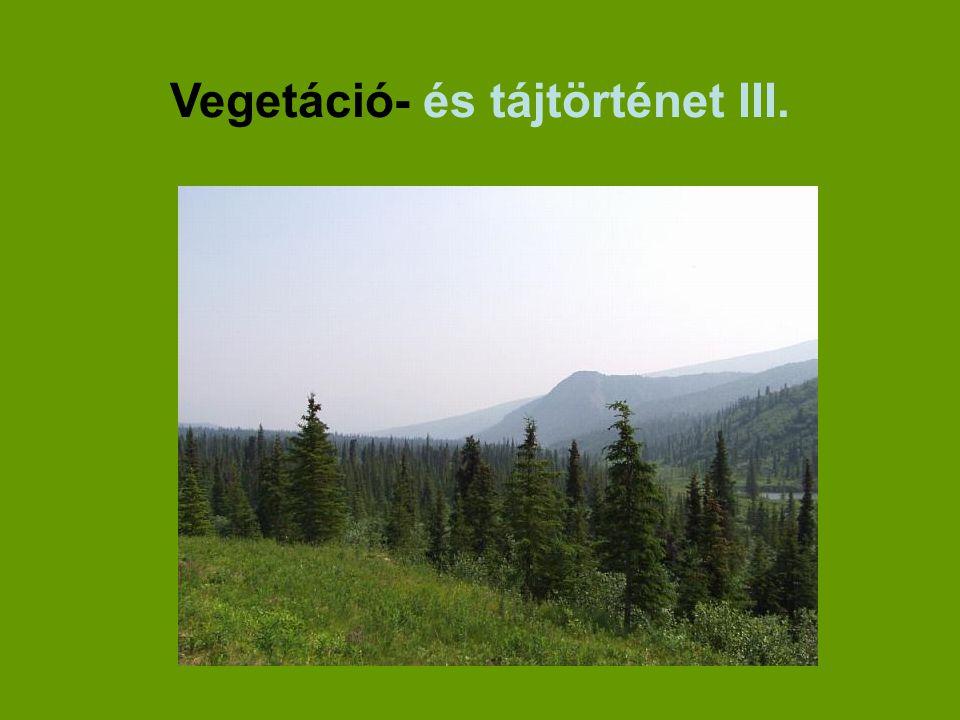 Vegetáció- és tájtörténet III.