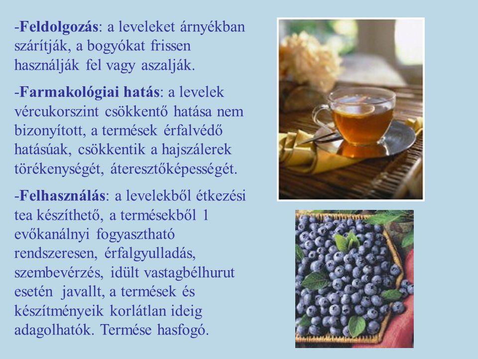 -Feldolgozás: a leveleket árnyékban szárítják, a bogyókat frissen használják fel vagy aszalják.
