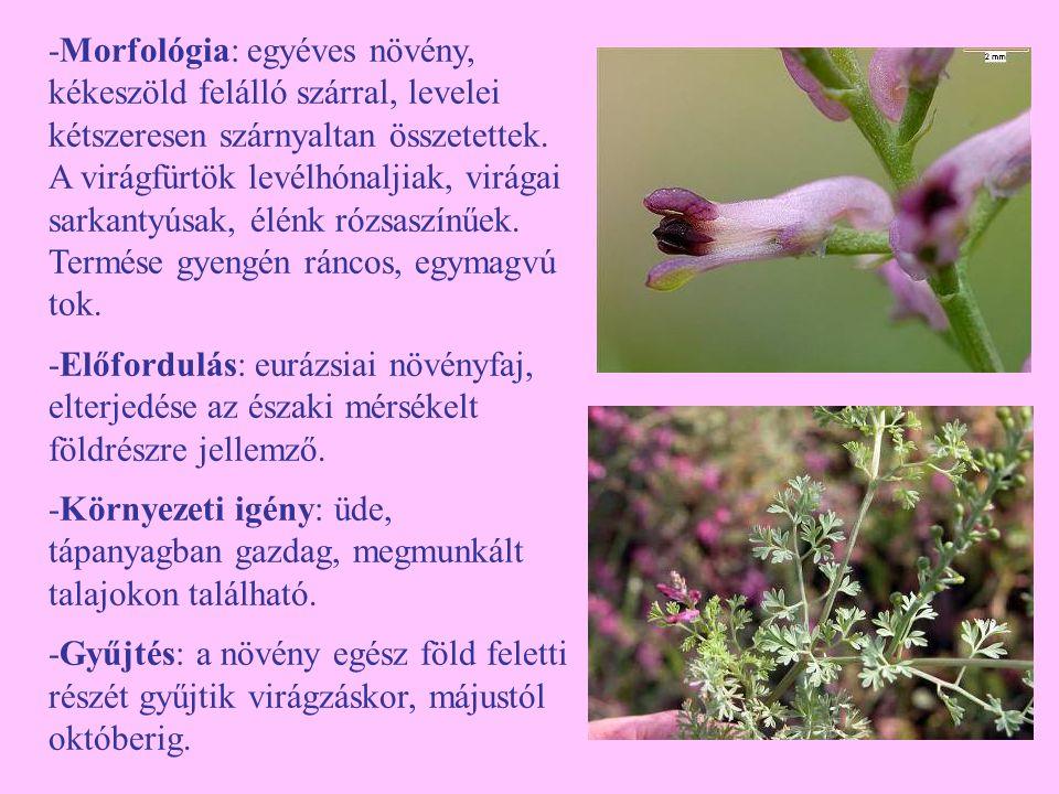 -Morfológia: egyéves növény, kékeszöld felálló szárral, levelei kétszeresen szárnyaltan összetettek. A virágfürtök levélhónaljiak, virágai sarkantyúsak, élénk rózsaszínűek. Termése gyengén ráncos, egymagvú tok.