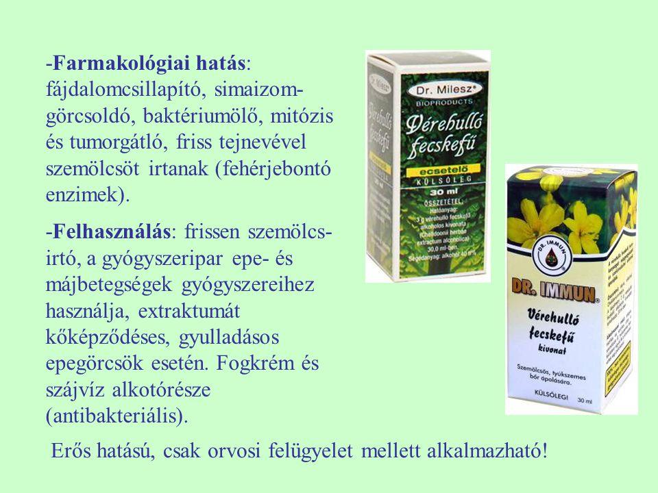 -Farmakológiai hatás: fájdalomcsillapító, simaizom-görcsoldó, baktériumölő, mitózis és tumorgátló, friss tejnevével szemölcsöt irtanak (fehérjebontó enzimek).