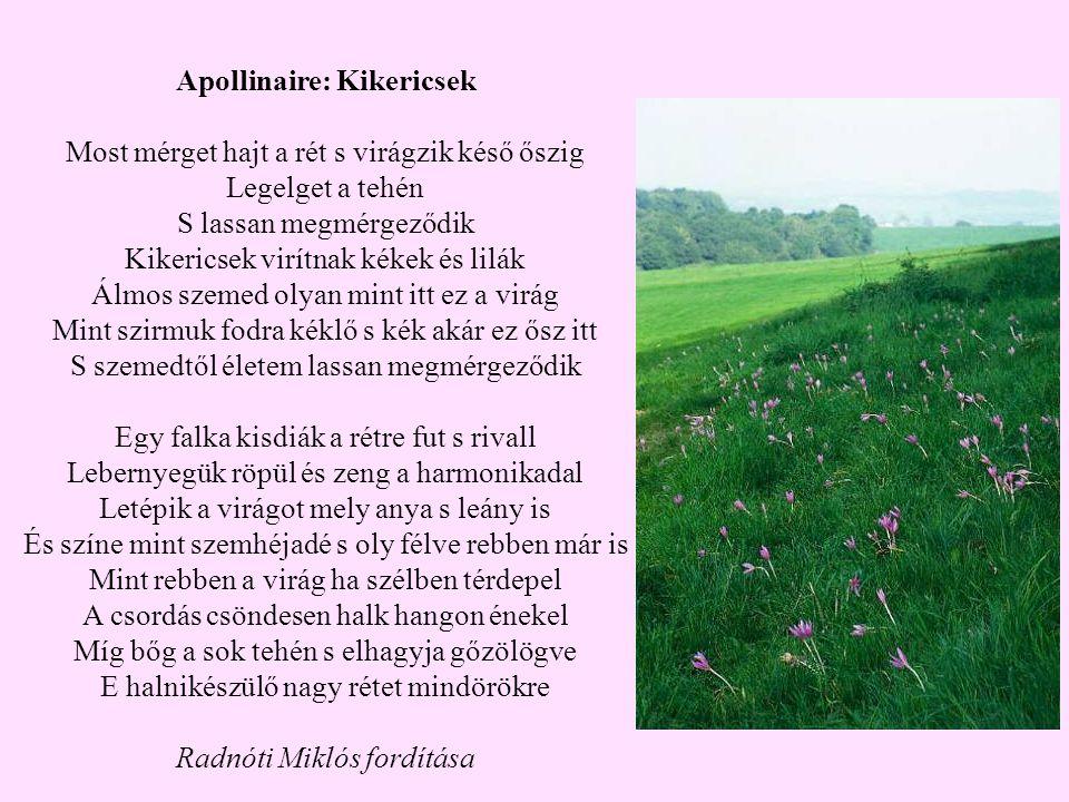 Apollinaire: Kikericsek