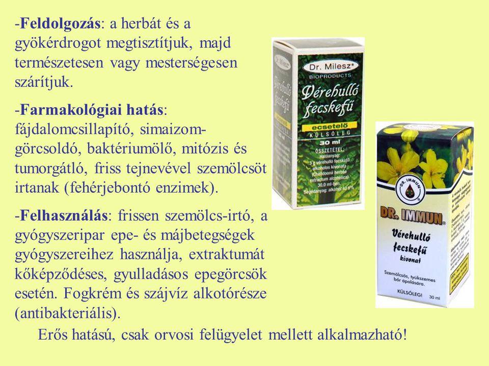 -Feldolgozás: a herbát és a gyökérdrogot megtisztítjuk, majd természetesen vagy mesterségesen szárítjuk.