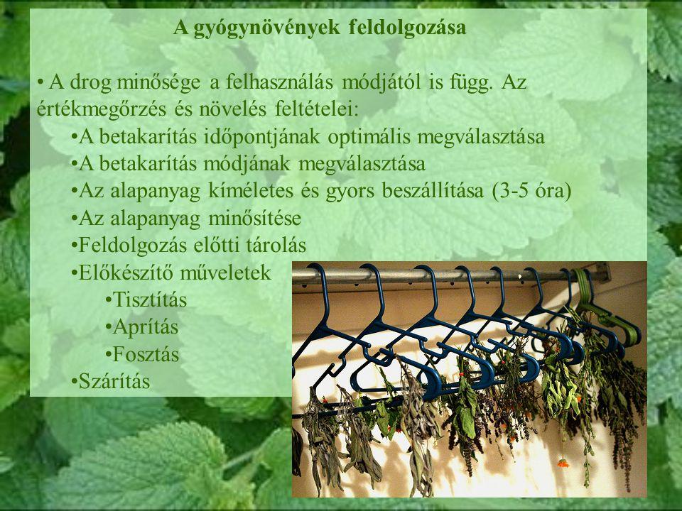 A gyógynövények feldolgozása