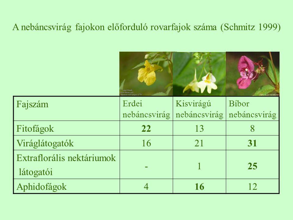 A nebáncsvirág fajokon előforduló rovarfajok száma (Schmitz 1999)