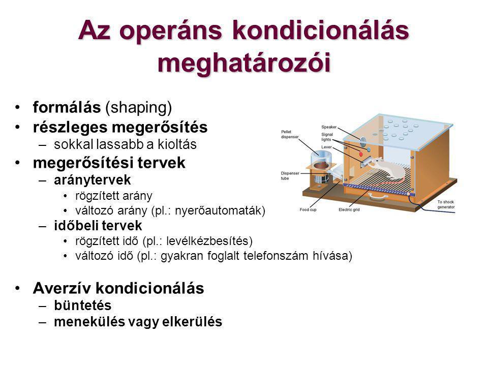 Az operáns kondicionálás meghatározói
