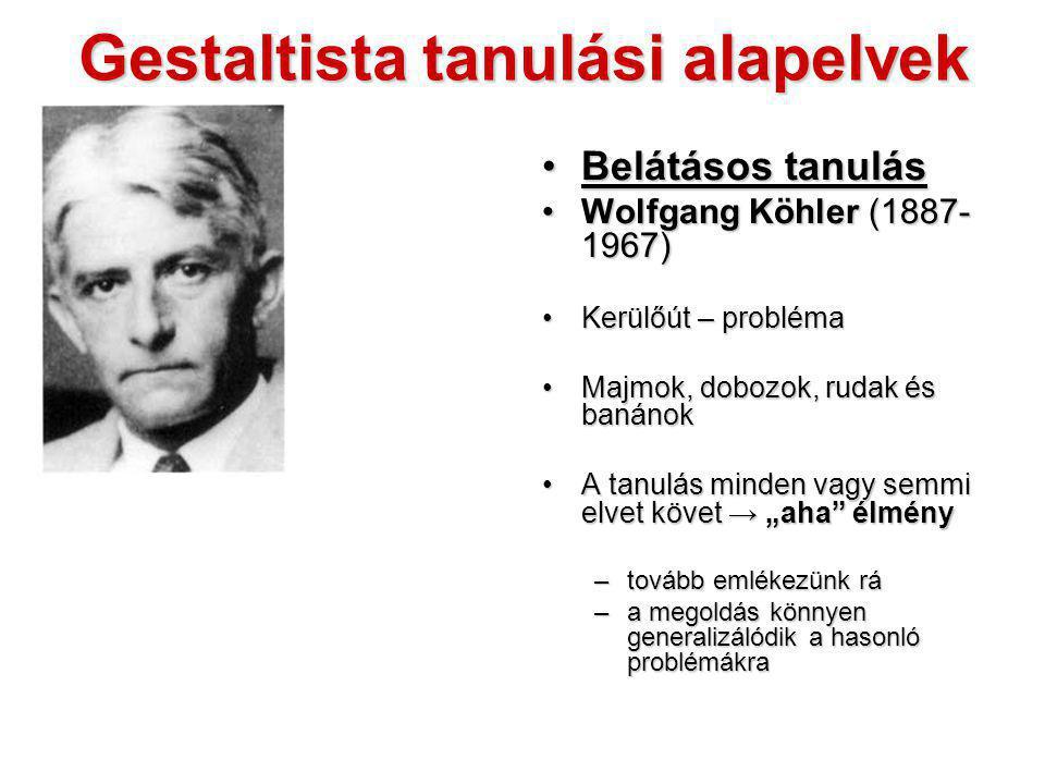 Gestaltista tanulási alapelvek