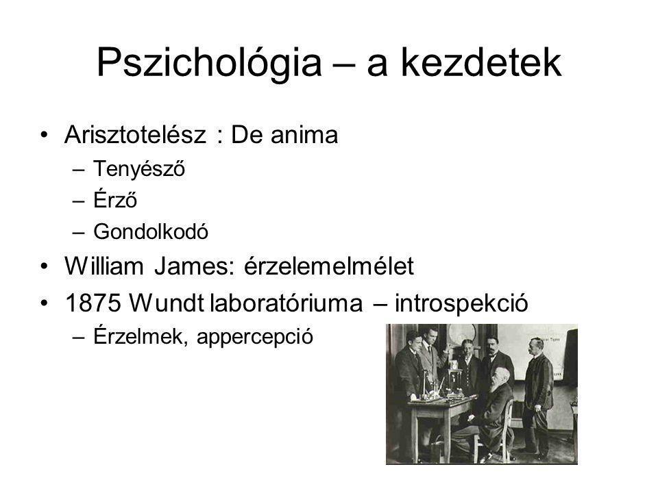 Pszichológia – a kezdetek